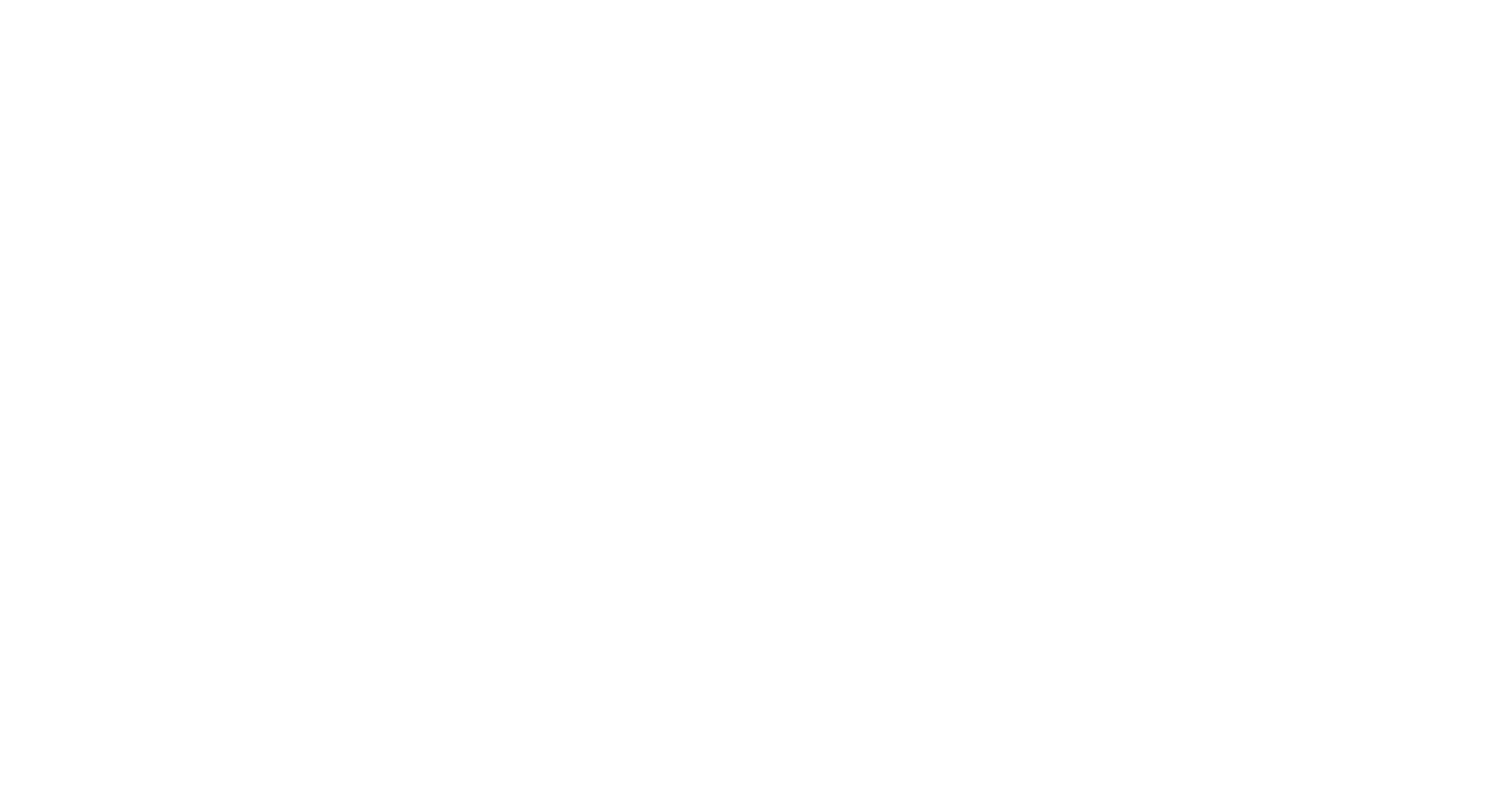 Schaefer & Co. Lofts