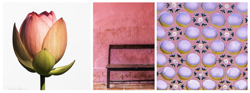 01 jan 18 2019_pink triptych.jpg