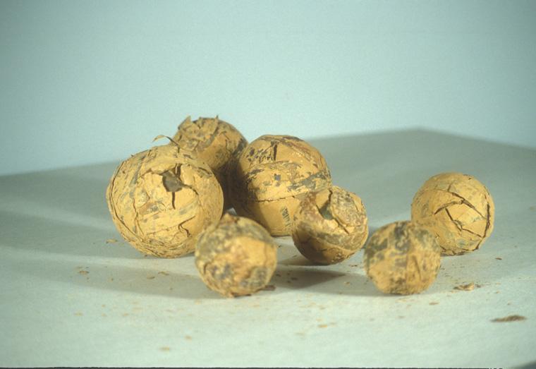"""RAW BALLS   1997, Massachusetts' kelp and Missouri Mud, 2-4"""" diameter."""