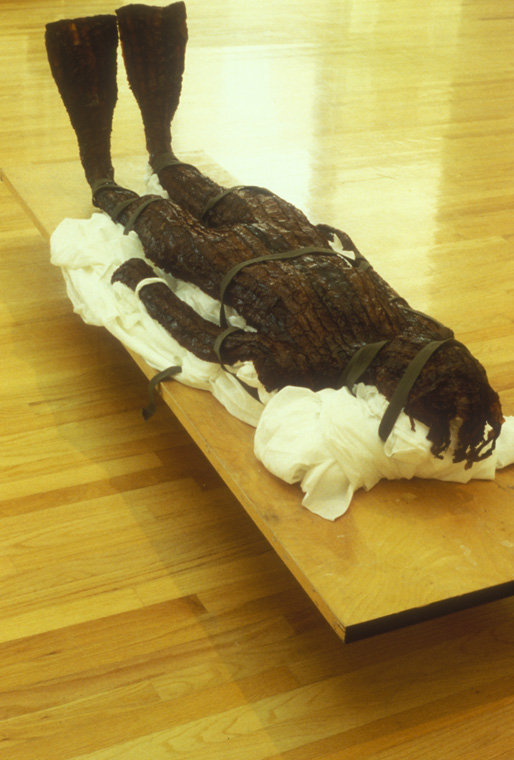 """GUARDIAN  1991-94  Hand sewn kelp, thread, synthetic felt, hide glue, beeswax, straps, hollow core door on cement blocks, life-sized figure, 80"""" L x 24"""" W x 30"""" H."""