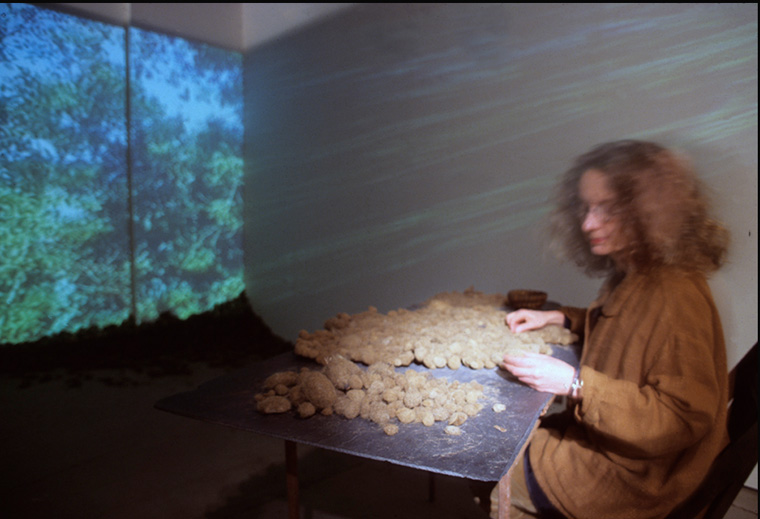 Installation and action with worktable, posidonie (eroded seaweed roots collected in southern France), sewing the seaweed into a textile; video projection which alternates between footage shot in France where the posidonie was collected and in Kansas City where it was prepared and sewing was begun, available space.