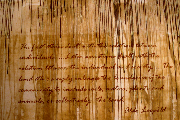 View of walls stained with local pigments and lettered with text from Aldo Leopold.