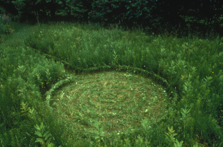 "Cul de sac, braided growing meadow grasses, path, 15' long x 2' wide x circle 13' diameter with 12""H woven edge"