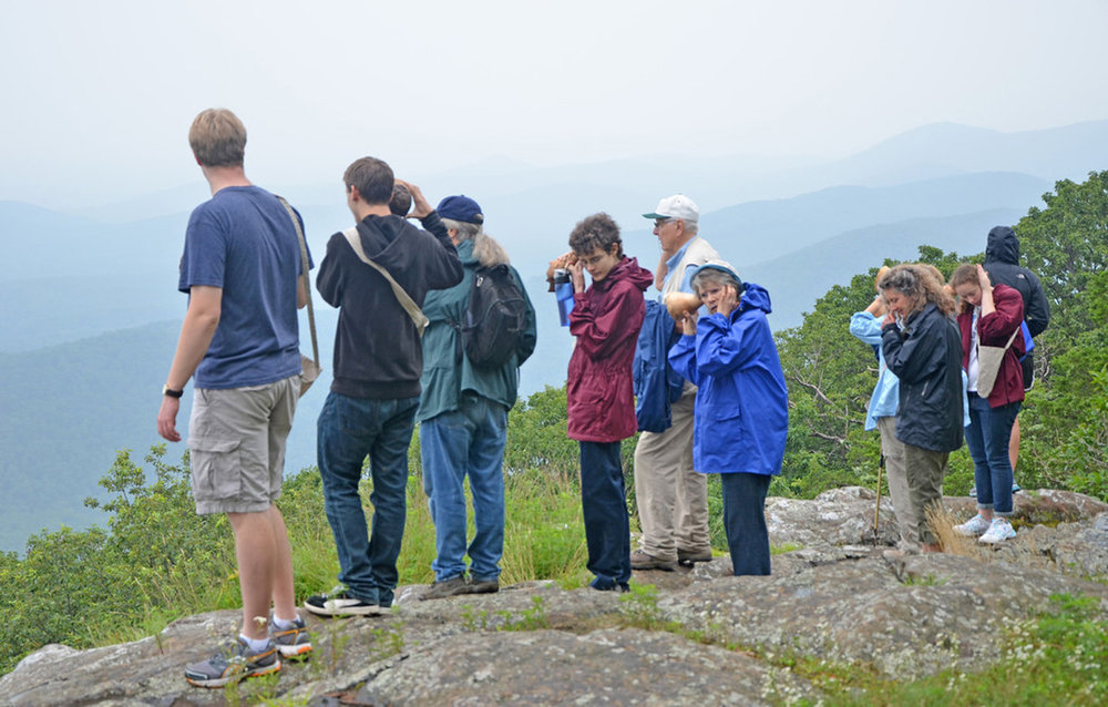 Sight and Sound Walks, collaboration with Robert Carl, listeners with the trumpets at the Fringe Tree Overlook, Appalachian Trail, Blue Ridge Mountains, VA Photography: John S. Taylor