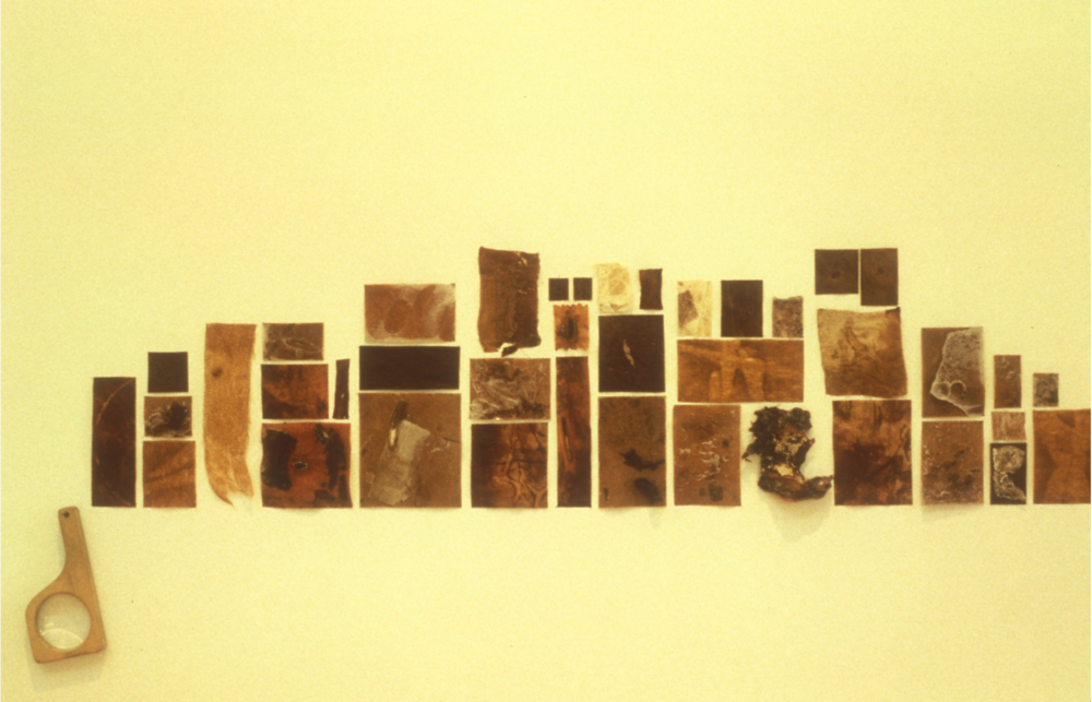 """PRODUCTION PROCESS DRAWINGS (Courting The Accident)  1993-94  Wax, shellac, pigments, clay, hide glue on synthetic felt and paper, kelp, plastic and collage, magnifying glass, size range 1"""" x 1"""", to 4"""" x 6""""."""