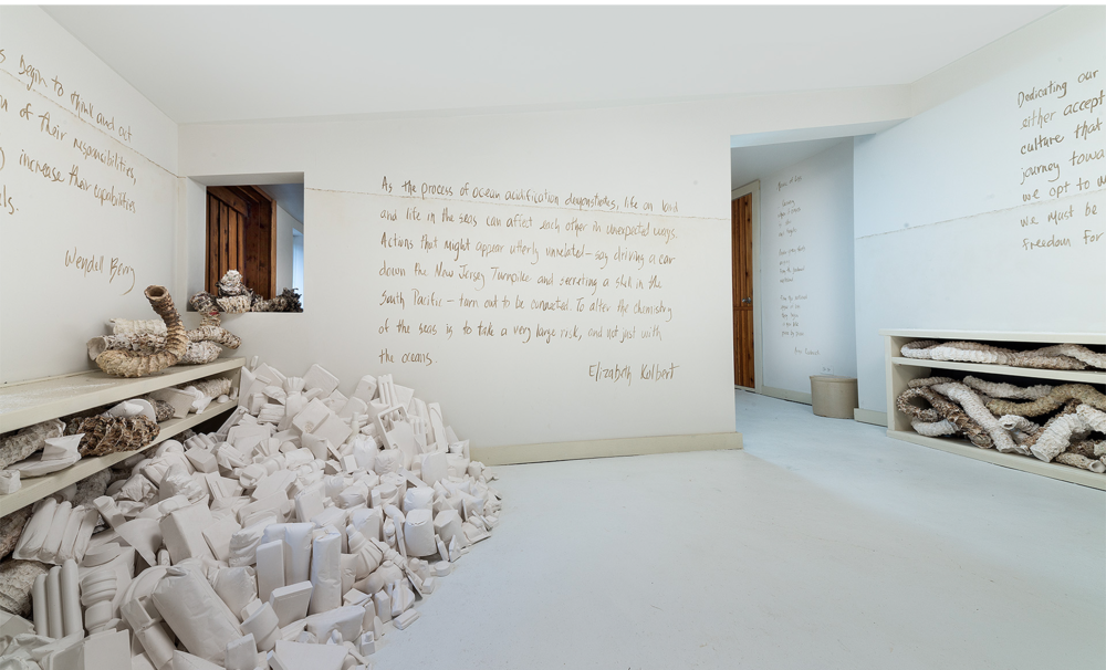 """Installation view of consumer goods casts """"washed up"""" against the bookcase with text by Elizabeth Kolbert."""