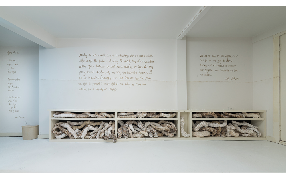 Installation detail of sea worm forms taking the place of books (some trying to exhibit vertical spines) with text by Arna Radovitch (L) and Wes Jackson (center and R).