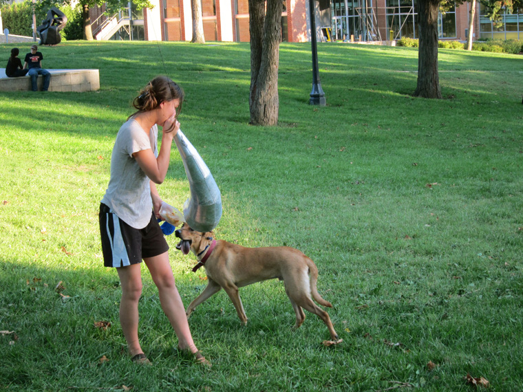 Viewer using horn to speak to dog, campus green, Kansas City Art Institute, Kansas City, MO