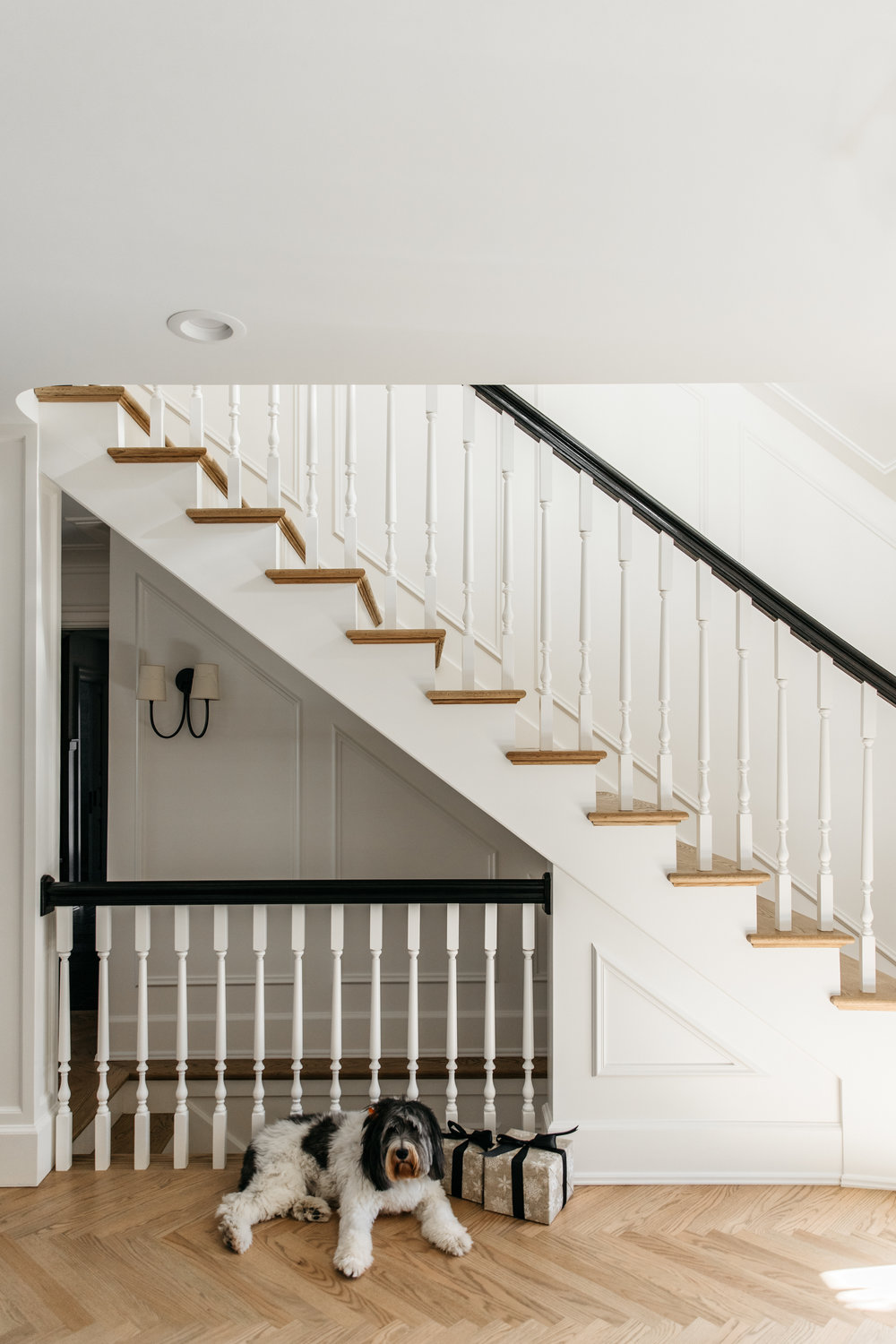 Staircase with white oak floors and puppy
