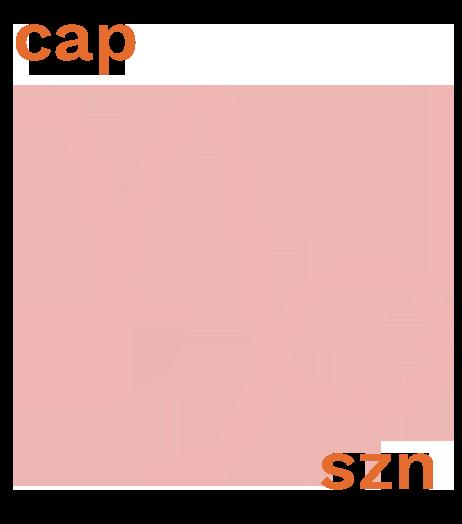 capszngif.png