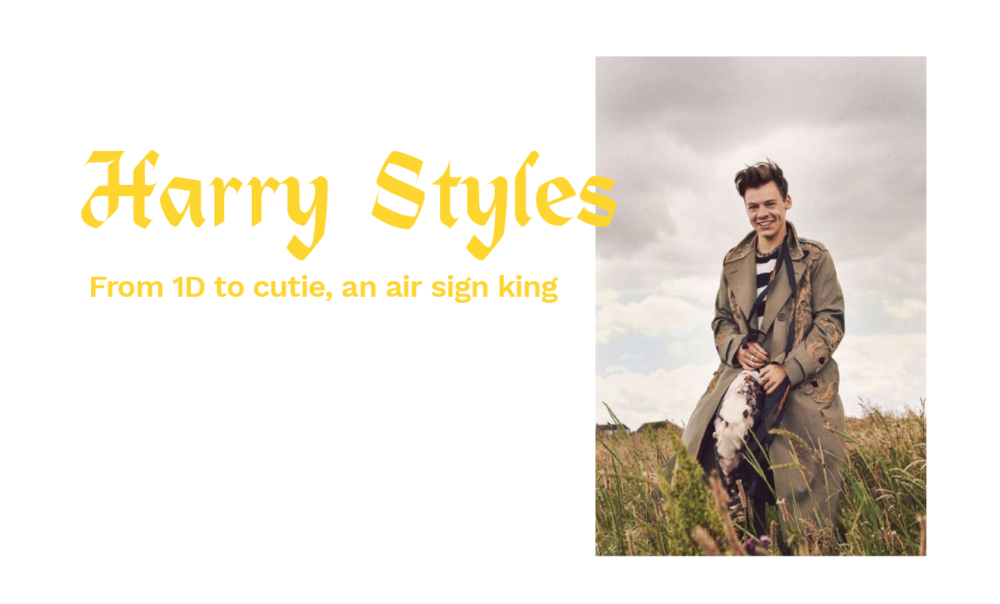 harry-03.png