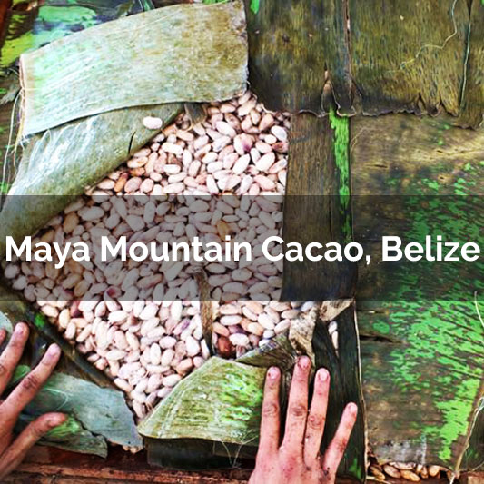 Maya Mountain Cacao, Belize - 2017 Harvest