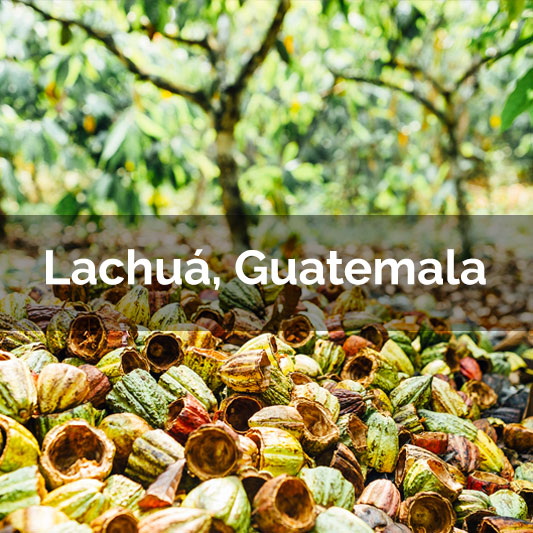 Lachuá, Guatemala - 2017 Harvest