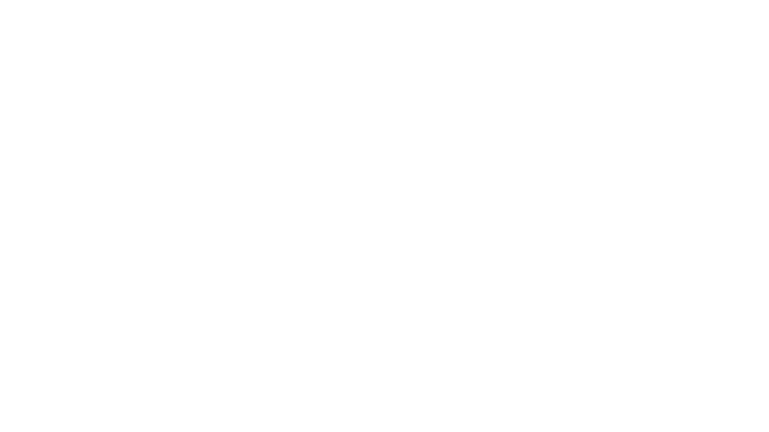 The Wig Hanger