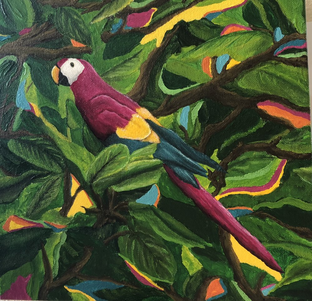 A painting of the Scarlet Macaw, now our spirit animal