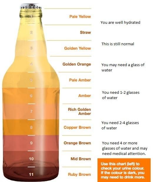 urine-color-test-bottle-with-notes.jpg