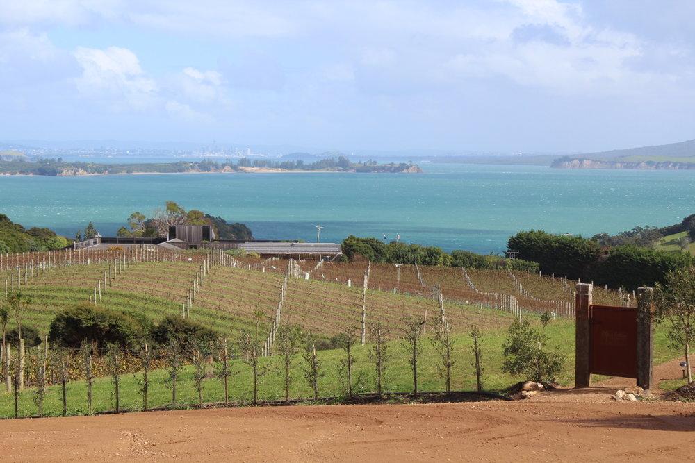 Mudbrick Winery