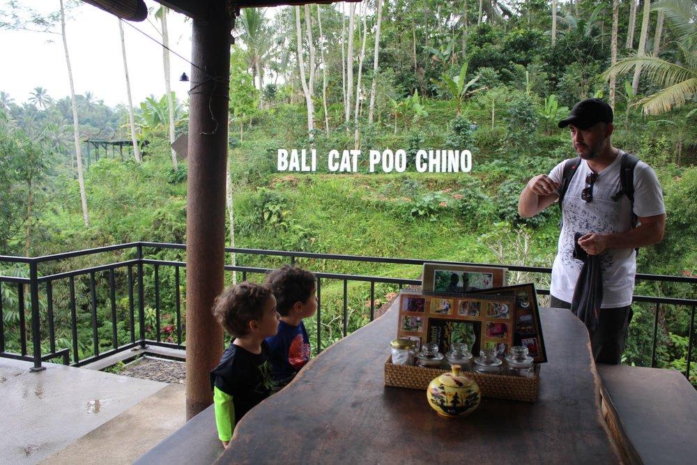 Meninos super atentos às explicações do papai de como é produzido o café Luwak.