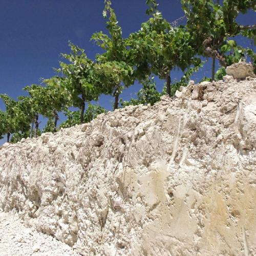 Albariza Soil- Jerez.png