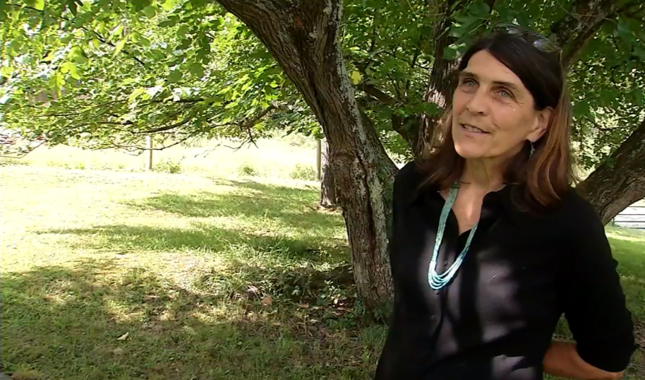 About Pam - Owner Pam Bailey, a botanist and landscape architect, has invested her knowledge in Five Springs Farm near the New River Gorge in southern West Virginia.Bailey works full time on the farm, started in 1992, which includes horses, a small herd of Limousin and Belted Galloway Beef cattle, Katahdin sheep, Great Pyrenees Guardian dogs, laying hens, and two farm dogs. She also plants in the high tunnel and gardens. Crops include herbs, flowers, and vegetables.