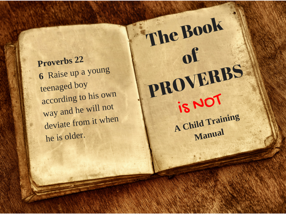 Proverbs is not a parent manual.png