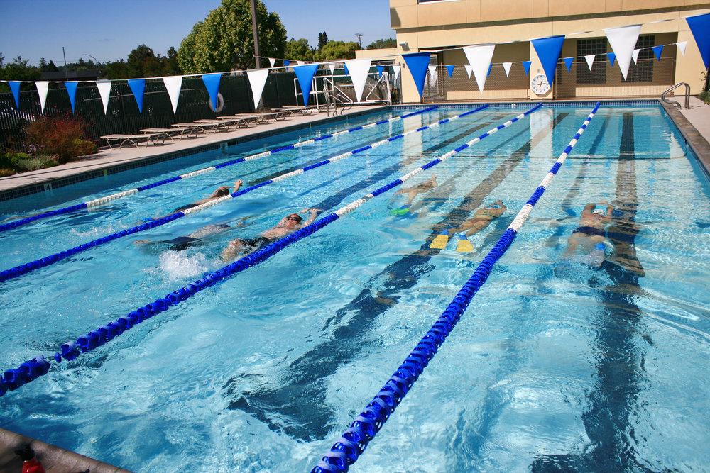 healthquestmastersswim.jpg