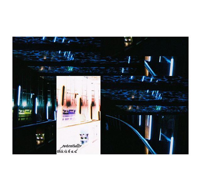 potentially, this is bad . . . . . . . . . .  #photography #filmphotography #film #35mm #35mmfilm #art #artphotography #negativefeedback #zineart #photographyzine #zine #glitchart #glitch #digitalart #distorted #glitche #analoguedistortion #distortion #artistsofinstagram #inspiration #artoftheday #gallery #instaart #creative #artwork #artist #art