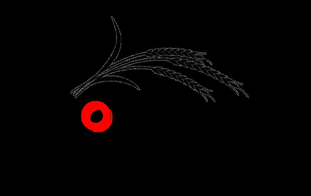 Fournos logo 3.png