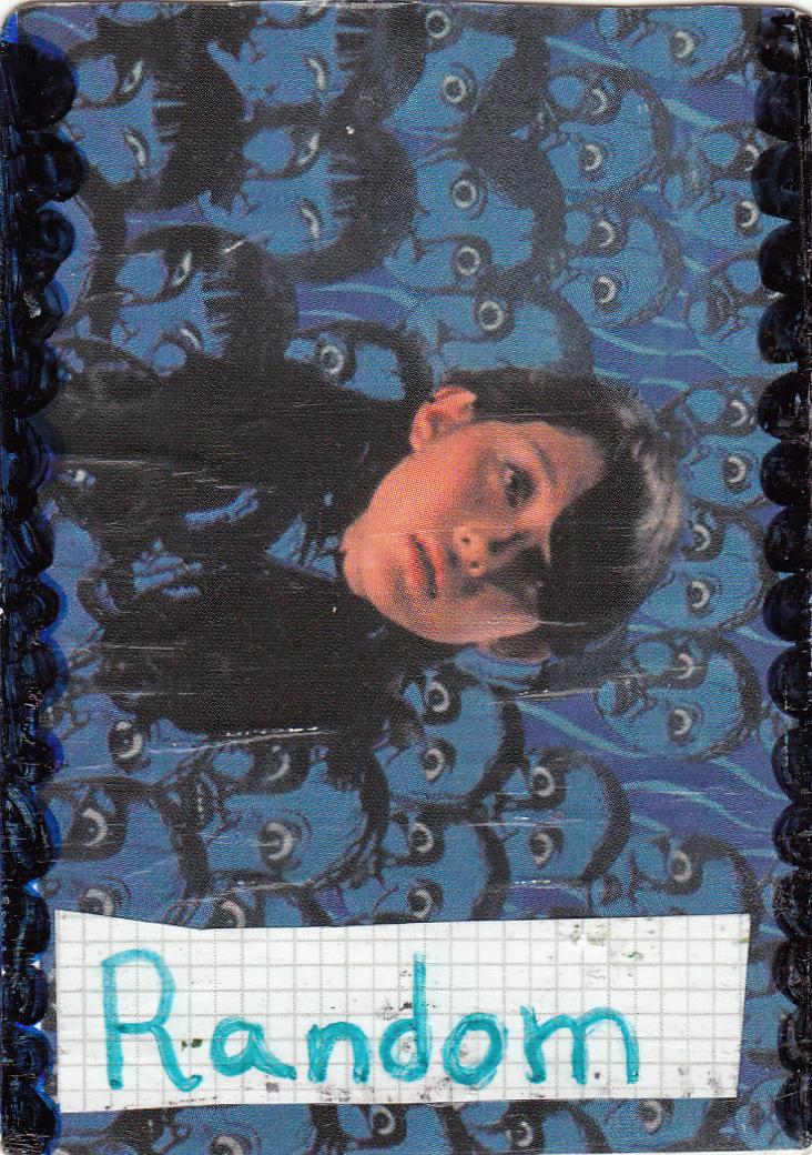 card24.jpg