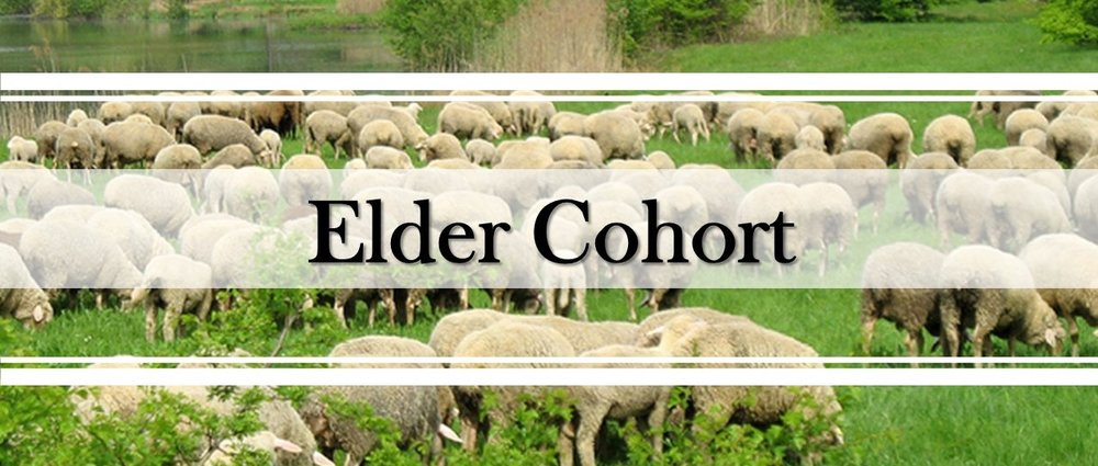 Elder Cohort.jpg