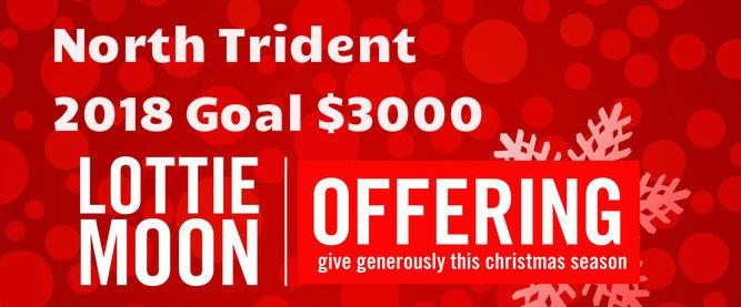 North Trident Goal.jpg