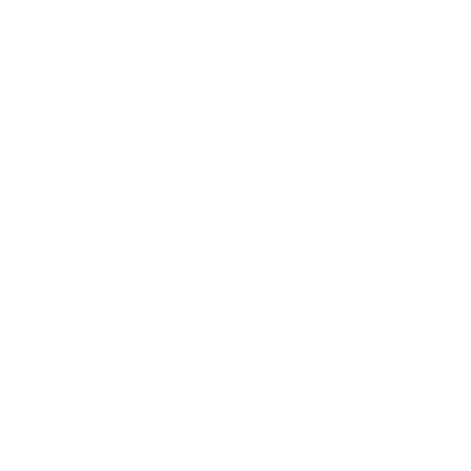 BC Youth Parliament