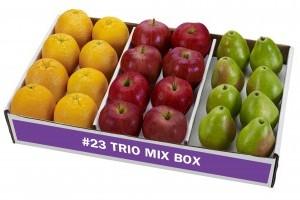 Trio Mix Box- Item #23