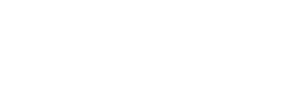 Logo_TE KOI_white.png