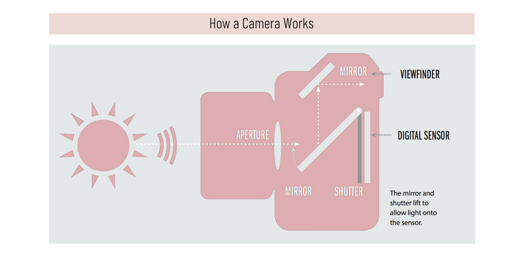 How a camera works.png