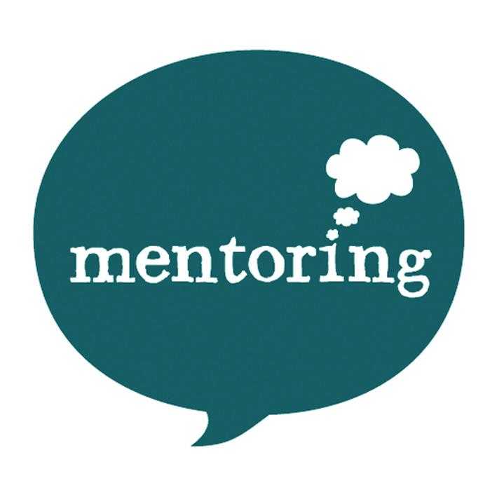 Mentoring - Bespoke mentoring or befriending programmes