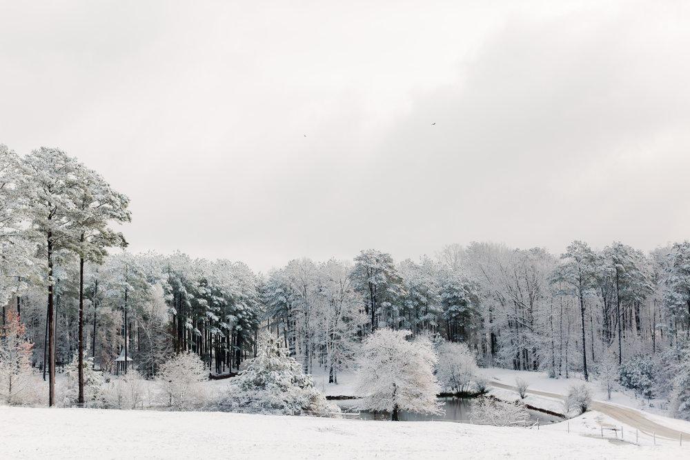ahp_serenbe-snow_images_DW7A7007.jpg