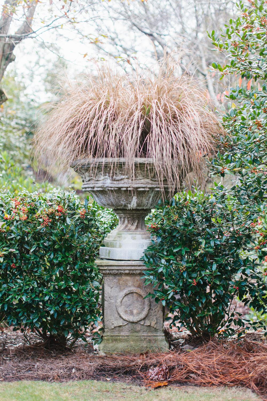 ahp_GG-gardenstory_clipping_garden_IMG_4678.jpg