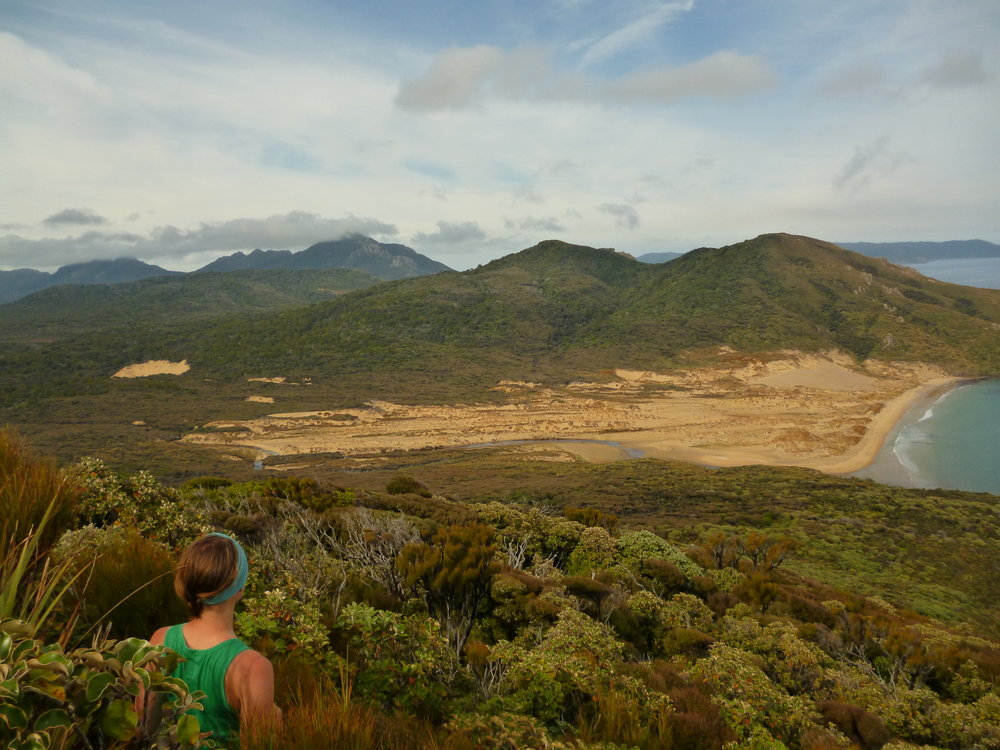 The bulk of Stewart Island is covered in native bush accompanied by long stretches of untouched coastline.