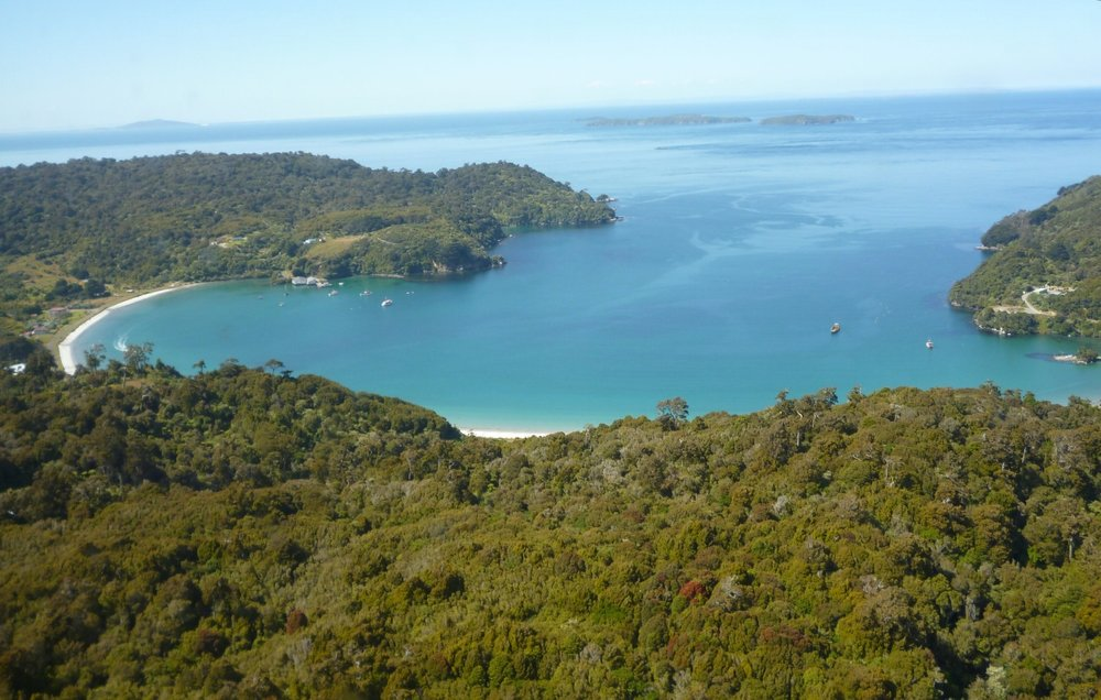 Flying in can be an epic way to start your journey to Stewart Island, and given that the ferry is quite pricey anyway the flight can (almost) seem like good value.