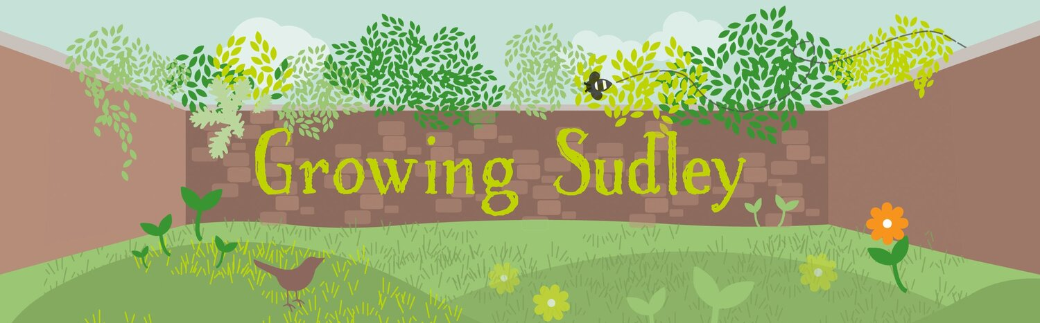 Growing Sudley