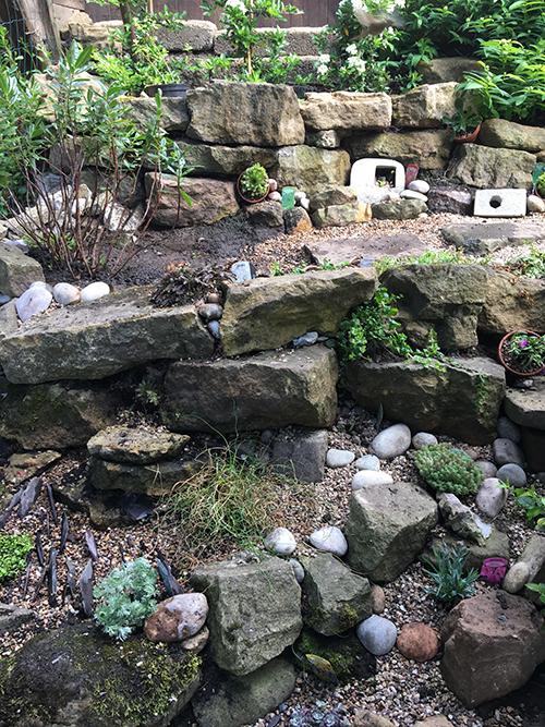 GardenCreviceGarden3.jpg