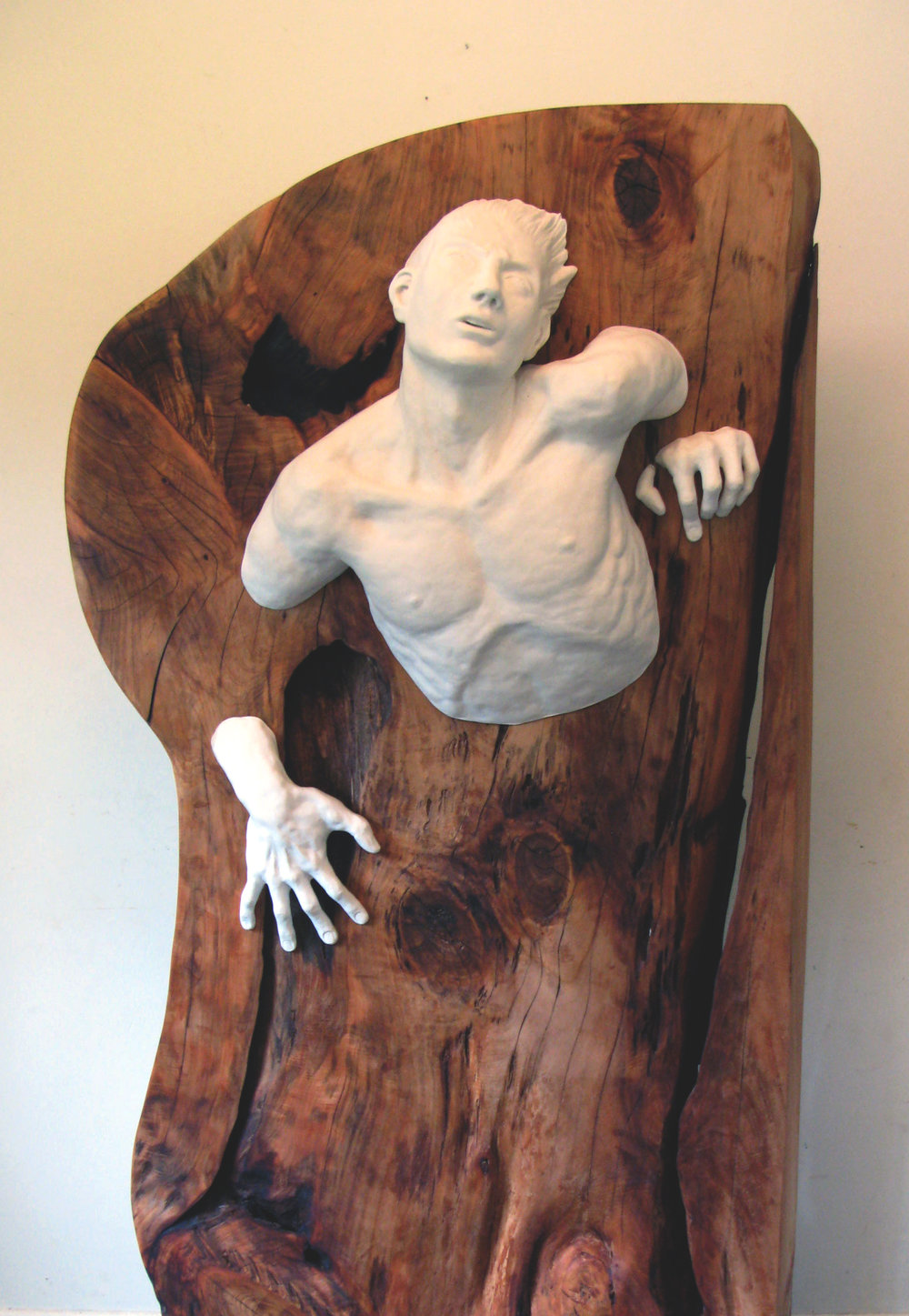 This sculpture was featured in a group art show at the Community Art Gallery on Waiheke Island, NZ.