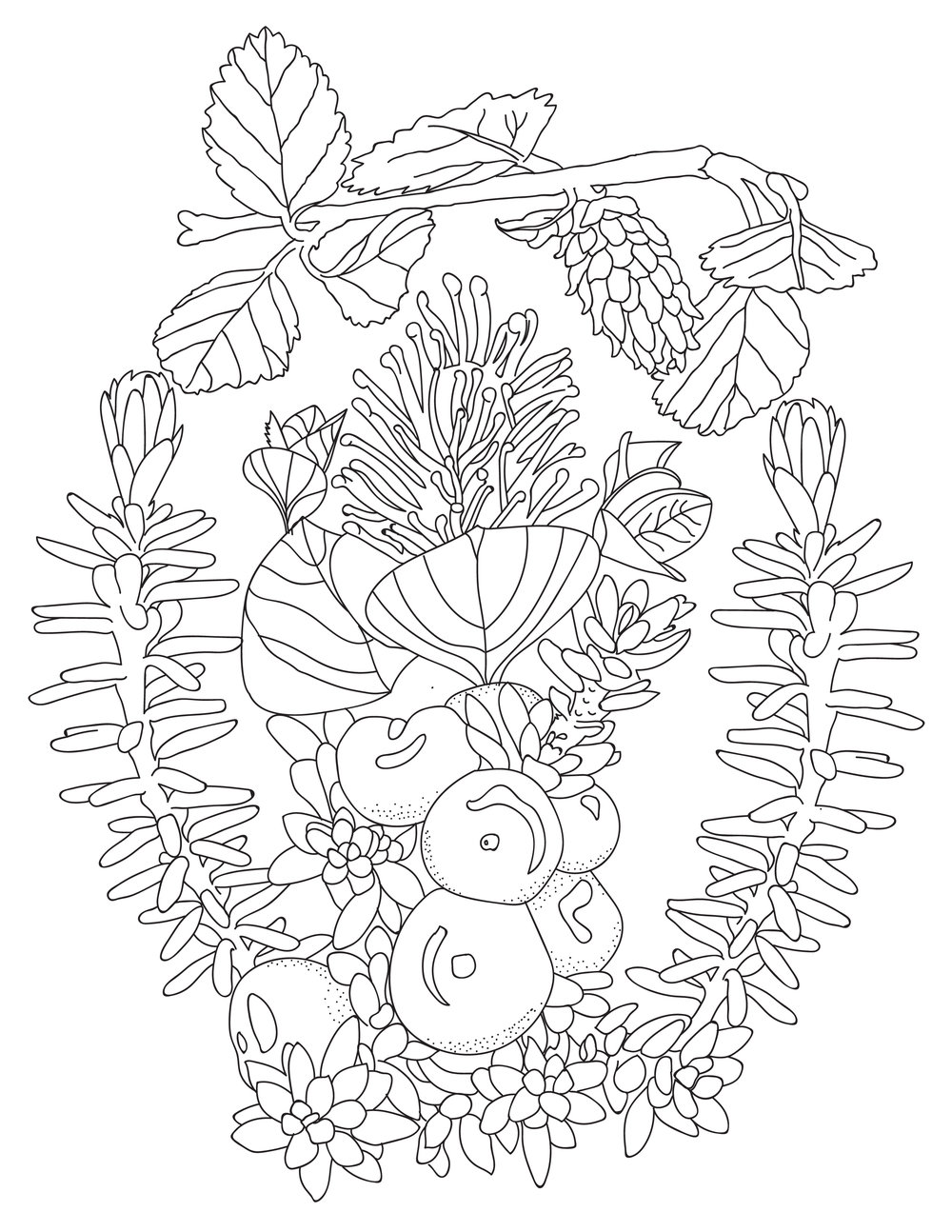 Arctic Plants Colouring sheets-02.jpg