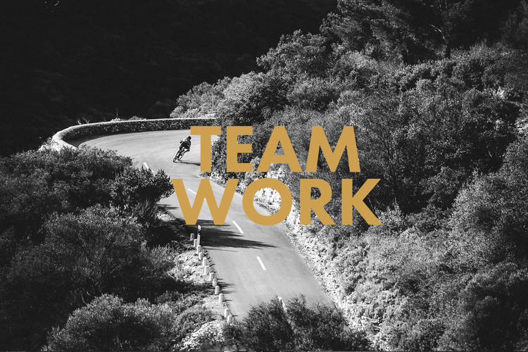 D5S_1236-teamwork.png