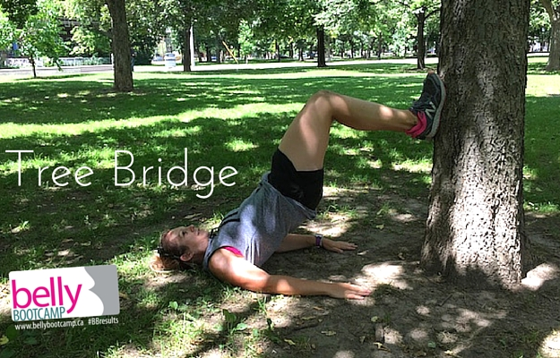 cottage-workout-tree-bridge.jpg