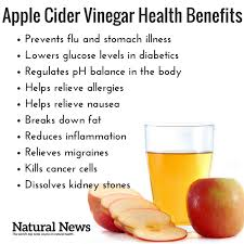 Health Benefits Of Apple Cider Vinegar Belly Bootcamp