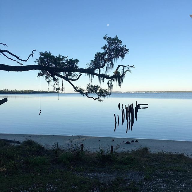 Mornings and evenings here are beautiful. We miss the freedom and openness of BLM land but are enjoying the beauty of the Florida panhandle. We are staying in a WMA (Wilderness Management Area), max stay is 7 days and a permit/reservation is required, but it is free! . . . #florida #floridapanhandle #floridawma #floridacamping #gulfshores #gulfcoast #vanlife #vanlifediaries #filmorethevan