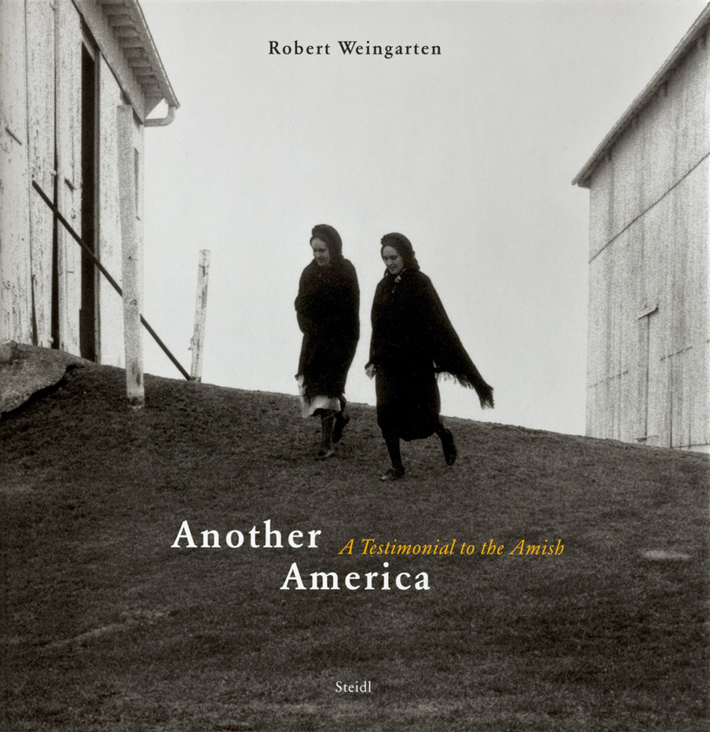 Robert Weingarten: Another America - Hardcover: 240 pagesPublisher: Steidl; 1 edition (November 2, 2004)Language: EnglishEssay by Robert A. Sobieszek