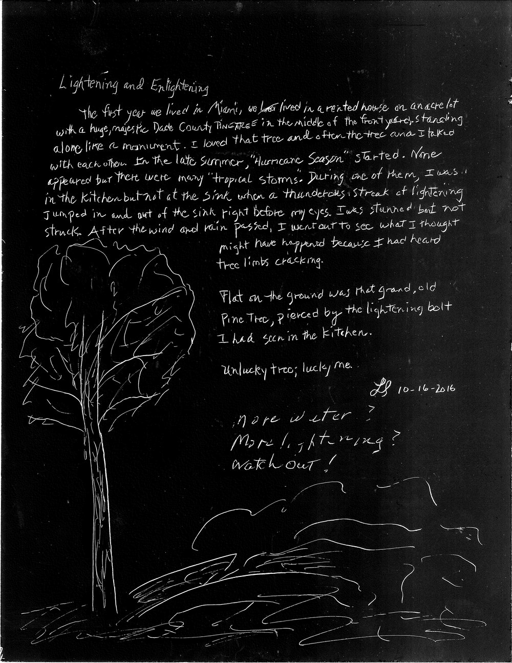 pine tree lightning story.jpg